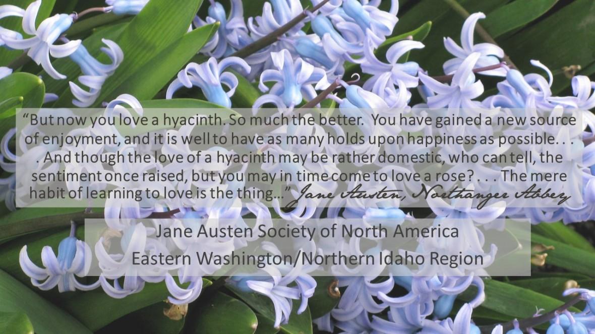 Hyacinthcover
